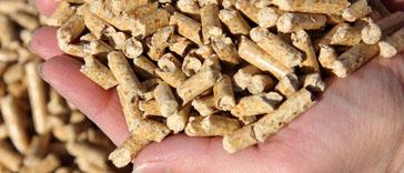 Holzpellets als förderungsfähige, ökologische Alternative zu konventionellen Heizsystemen